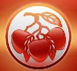 红荔蛤蚧酒加盟