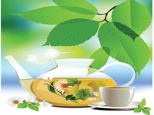 大草煲茶馆加盟