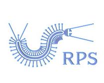 RPS鞋业