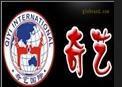 奇藝跆拳道