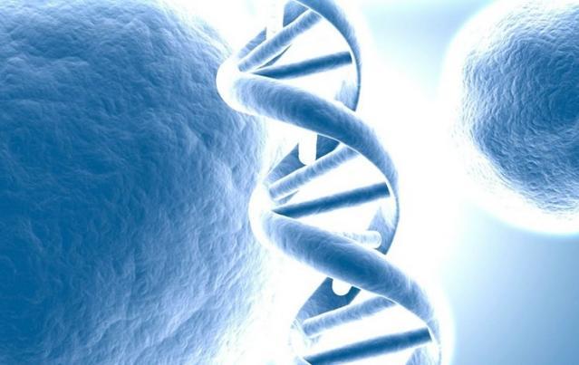 爱唯因健康基因检测加盟
