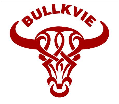 BULLKVIE公牛动感