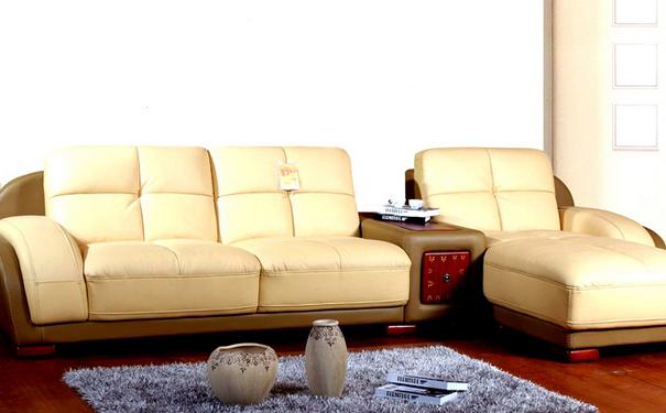 布艺沙发品牌加盟排行榜之七:天子真皮沙发