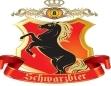 德马皇冠黑啤
