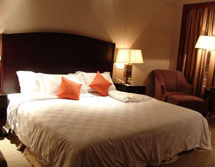嘉逸国际酒店