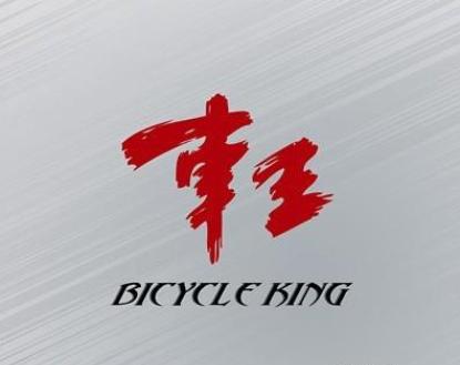 车王电动车