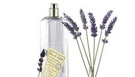 loccitane香水