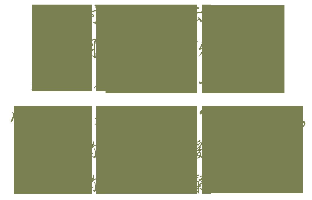 绿色花纹胸罩