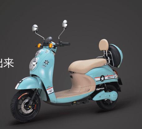 雅丽电动车项目产品图片