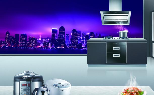 2019年厨卫电器排行榜_十大厨卫电器品牌排行榜