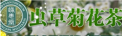 虫草菊花茶