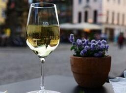 霞多丽葡萄酒