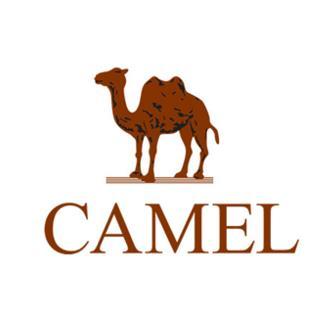美国骆驼加盟
