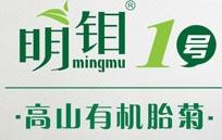 明钼1号高山有机胎菊