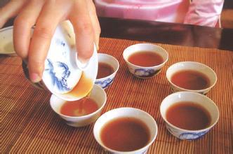 普洱茶代理哪个品牌好