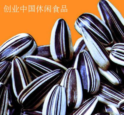 创业中国休闲食品