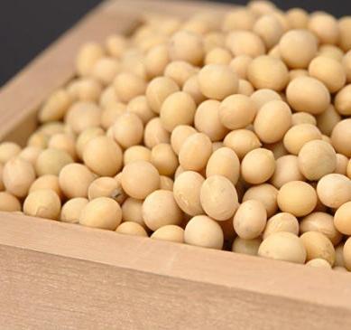 YANZI燕子豆制品