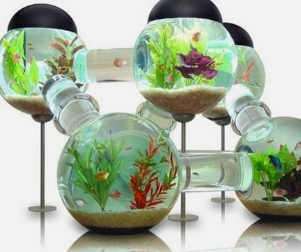 神奇创意水族馆