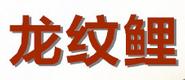 龙纹鲤渔具