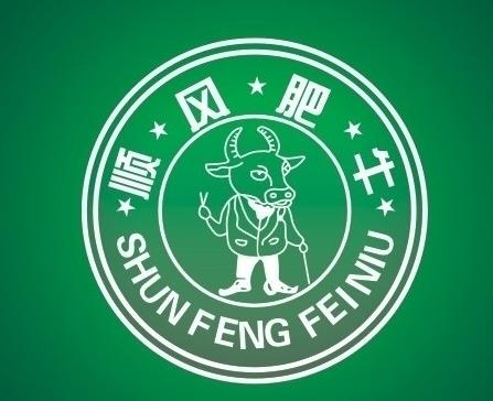 中国顺风肥牛