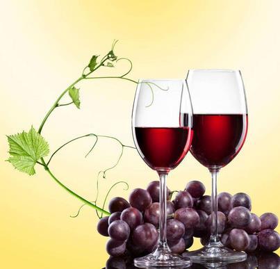 莱思特葡萄酒