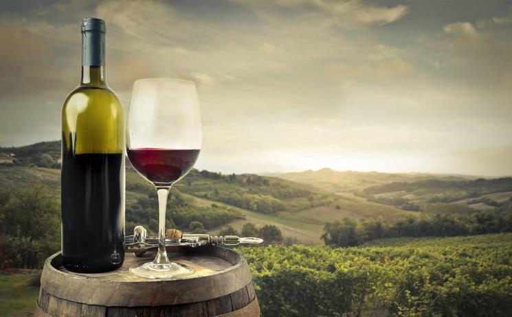 莱思特葡萄酒加盟...<a href=