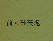 前园硅藻泥