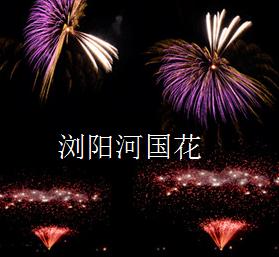 瀏陽河國花