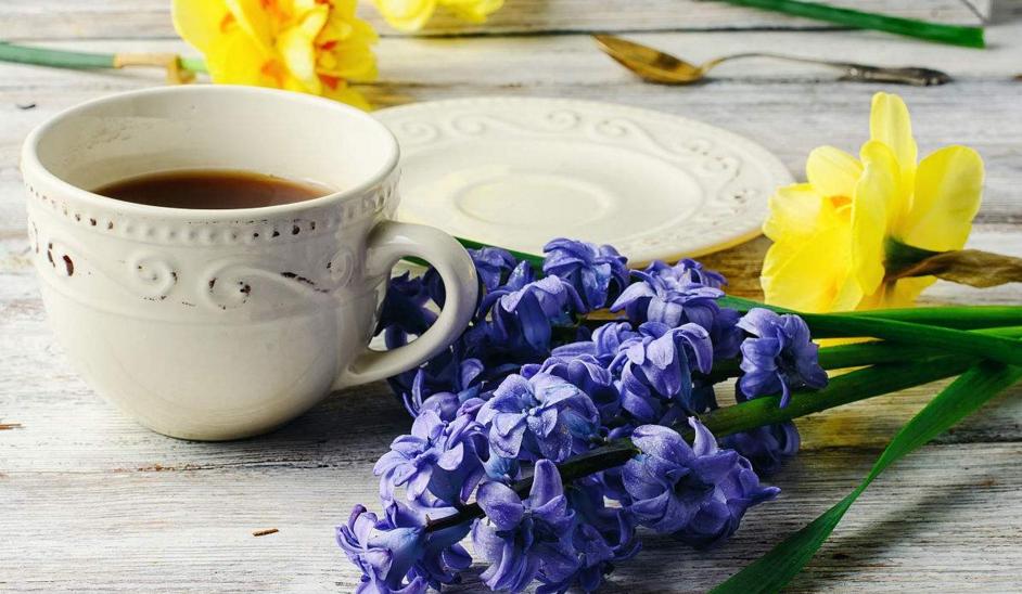 养生花草茶加盟图片
