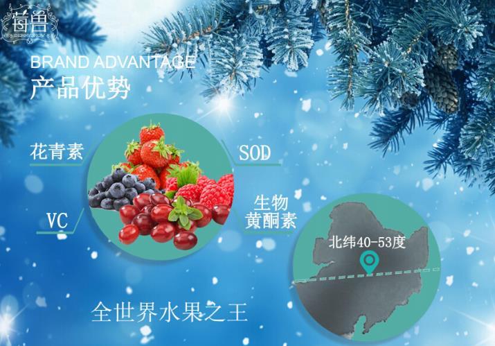 莓兽饮品(一颗冉冉升起的果汁新品牌