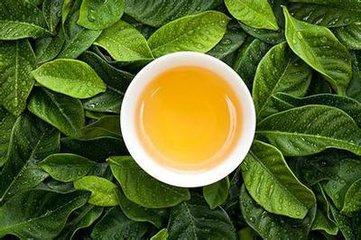 农家茶叶加盟