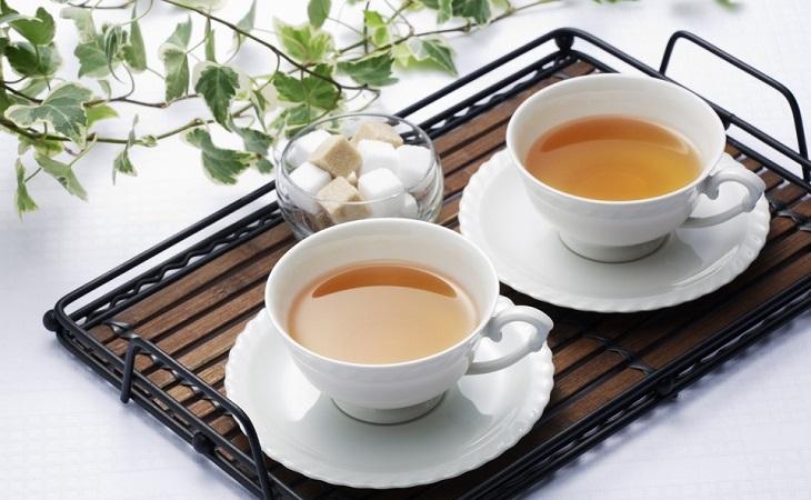 桑叶茶加盟
