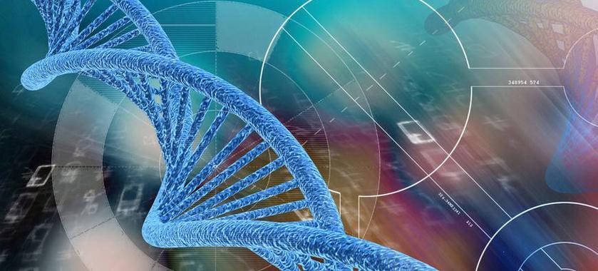 水母基因检测加盟