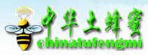 中华土蜂蜜加盟