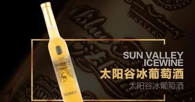 太阳谷冰酒加盟