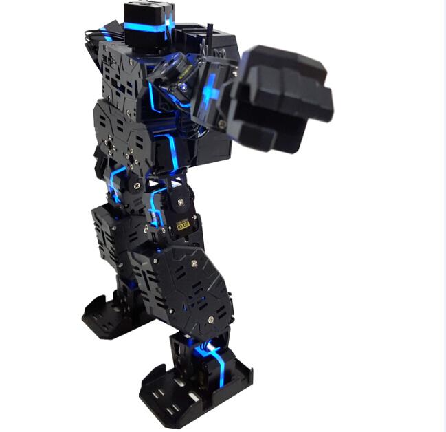 雄孩子人形机器人