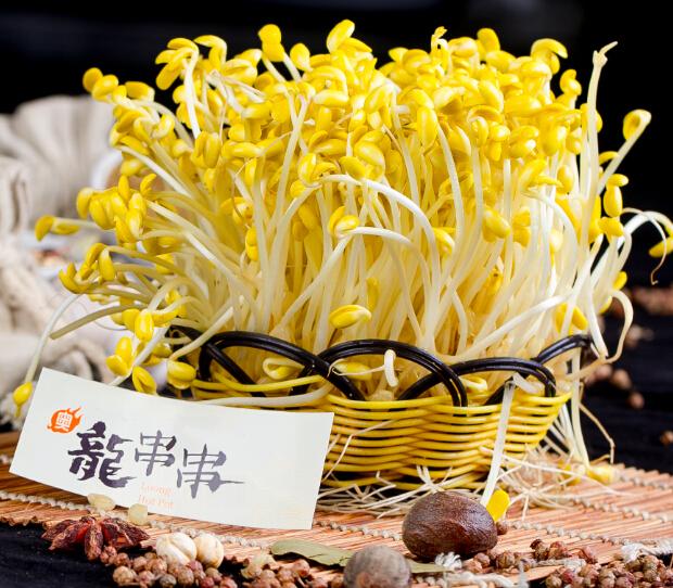 奥龙串串豆芽