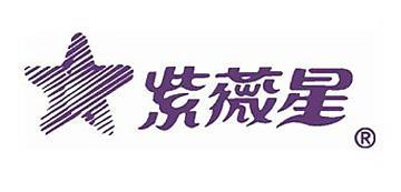 紫微星理疗仪