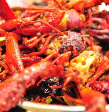 天泽园麻辣小龙虾特色龙虾