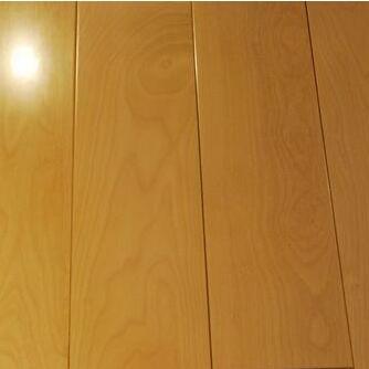 冬日暖阳实木地板