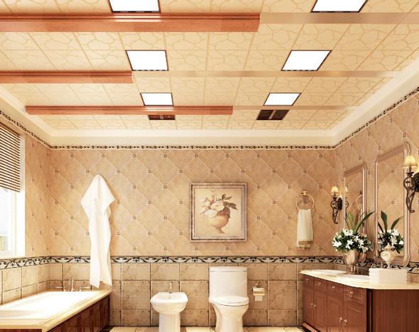 GRP吊顶浴室示意图