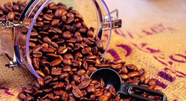 咖啡豆纯正