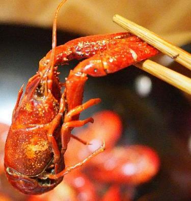 黄村麻辣小龙虾单个龙虾