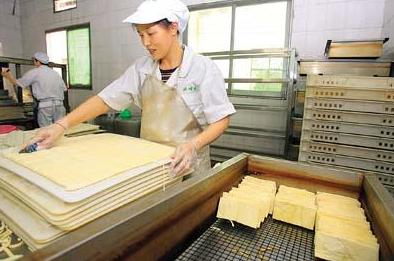 豆制品加工厂