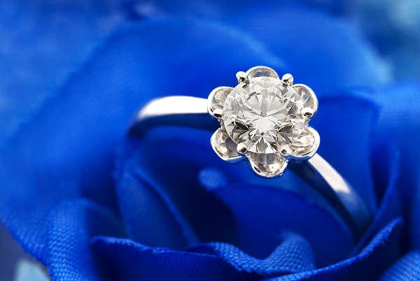 璀璨夺目的钻石小鸟首饰