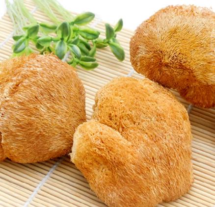 悦悦淏西藏特产猴头菇