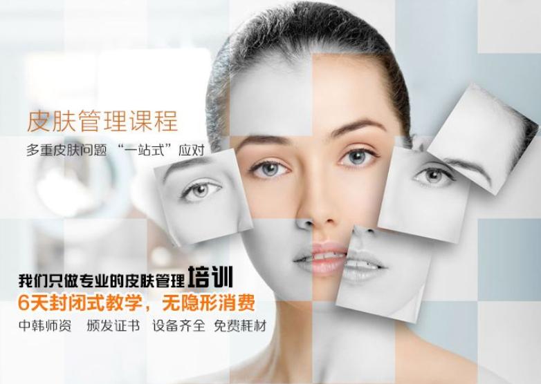 皮肤管理都有哪些项目_lol竞猜平台