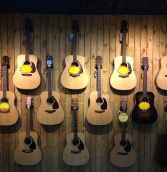 六月天吉他培训吉他