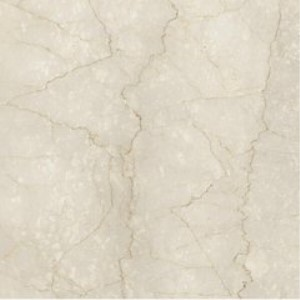 威廉顿瓷砖白色瓷砖