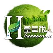 排毒减肥神器:皇草极蓝莓发酵果蔬汁